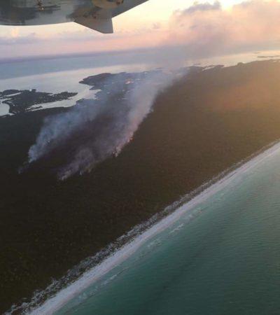 INCENDIO EN LA ISLA DE HOLBOX: Denuncian quema intencional de mangle y selva en la ensenada donde pretenden construir polémico proyecto turístico
