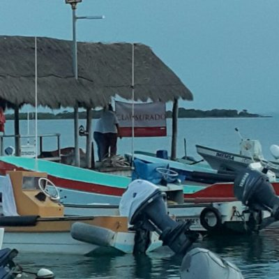 DAN PRIMER GOLPE A BORGE: Clausura Profepa obra en un muelle de Isla Mujeres atribuida a su familia