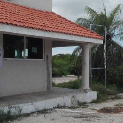 Por falta de permisos, clausura Profepa desarrollo inmobiliario 'Royal Gardens Yucatán' en Mérida