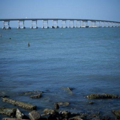 Advierten riesgos para actividad pesquera en la Sonda de Campeche por contaminación petrolera