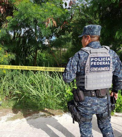 ASESINAN A UN HOMBRE EN CANCÚN: Hallan a persona con la cabeza destrozada en área verde de la Región 227