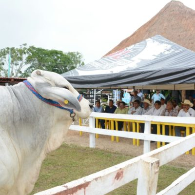 Se reúne Alcalde Luis Torres con productores agrícolas de OPB