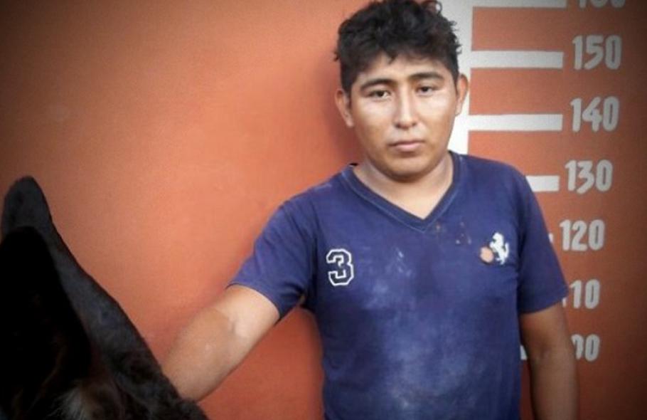 ESCALA LA DELINCUENCIA EN YUCATÁN: Detienen a un hombre por secuestro del burro 'Filemón' en Motul
