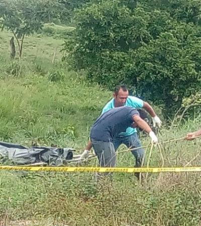 Los últimos 6 ejecutados en una camioneta en Veracruz eran de Tabasco