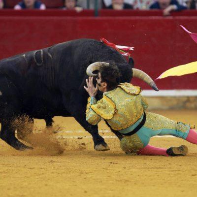 Sufre torero escalofriante embestida y revolcada en Zaragoza