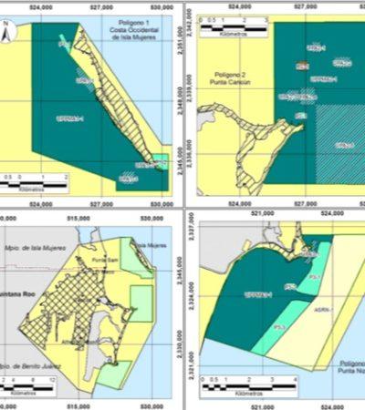 Acuerda Conanp suspensión inmediata de hábitats artificiales en Quintana Roo