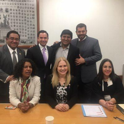 Designan a diputado Toledo como secretario de la Comisión de Transparencia y Anticorrupción en la Cámara de Diputados
