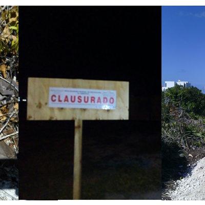 Clausura Profepa 4 predios en la costa de Yucatán por desmonte y relleno sin permisos ambientales