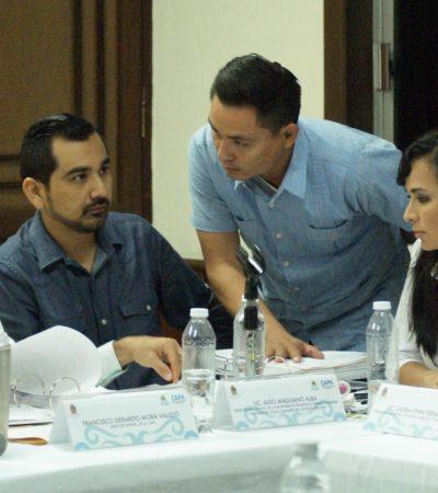 Votará Consejo Directivo de la CAPA solicitud de creación del organismo operador en Puerto Morelos en sesión extraordinaria