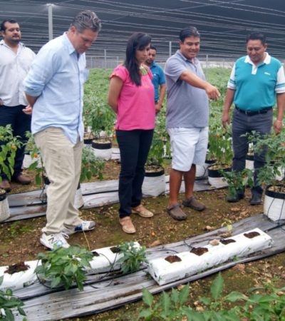 Respalda Alcaldesa proyectos productivos en Leona Vicario