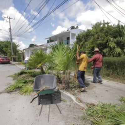 Al cierre del año, Alcaldesa hace recuento de obras de infraestructura y servicios para Puerto Morelos