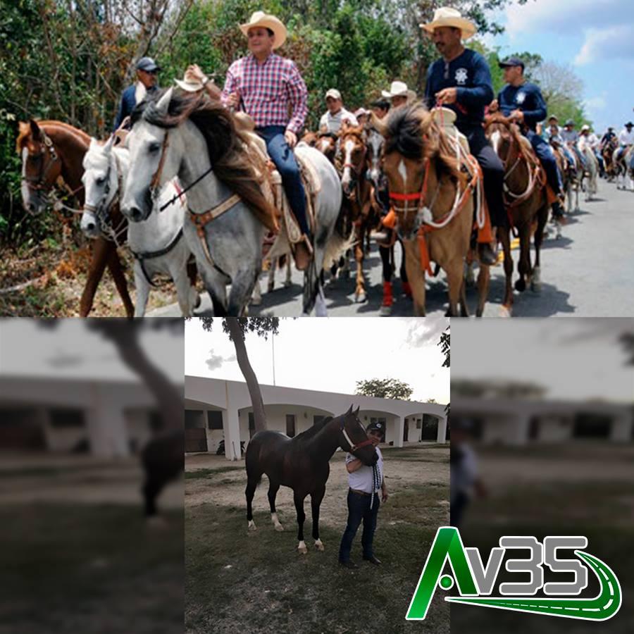 YA SON GENTE DE 'A CABALLO': Ventilan que la familia de Fredy Marrufo posee un rancho con caballos valuados en miles y hasta millones de pesos