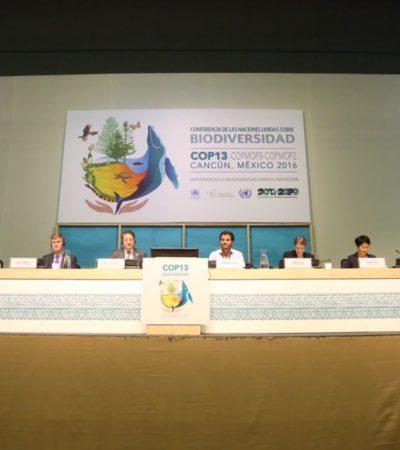 INICIA LA COP 13 EN CANCÚN: Apremio de países ante el desvanecimiento de metas para salvar biodiversidad