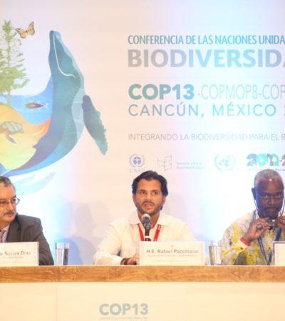 APRUEBAN DECLARACIÓN DE CANCÚN EN LA COP 13: Ministros de 190 países piden medidas urgentes en favor de la riqueza biológica