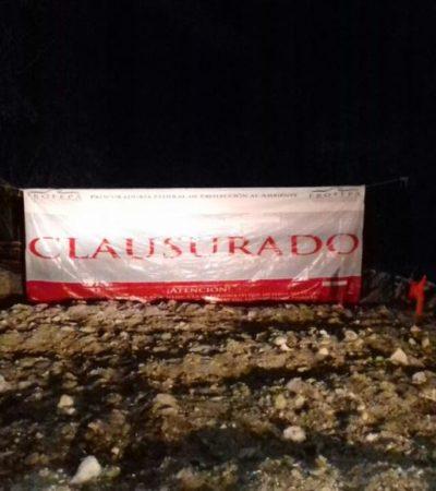 Clausura Profepa la polémica rehabilitación del camino que conduce a la Isla de la Pasión en Cozumel
