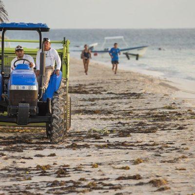 QUIERE PUERTO MORELOS SU PRIMERA 'BLUE FLAG': Lanzan programa permanente de limpieza de playas