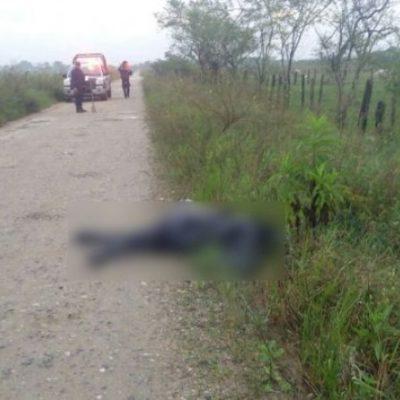 VIOLENCIA EN TABASCO: Hallan a hombre ejecutado a balazos en Huimanguillo