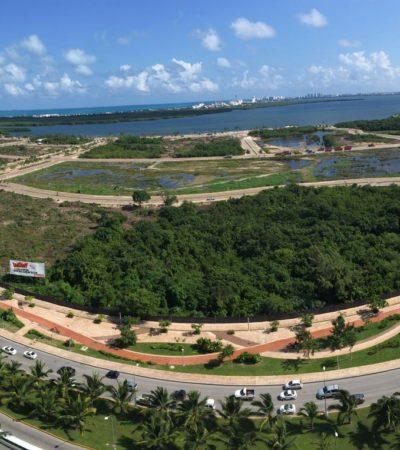 """""""EL CASO YA NO ESTÁ EN MANOS DE FONATUR"""": A un año de la devastación del Malecón Tajamar, activistas ratifican que no pararán la lucha"""