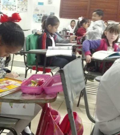FRÍO REGRESO A CLASES: Ubican ausentismo escolar en más del 10% por temperatura de menos de 20 grados en Cancún