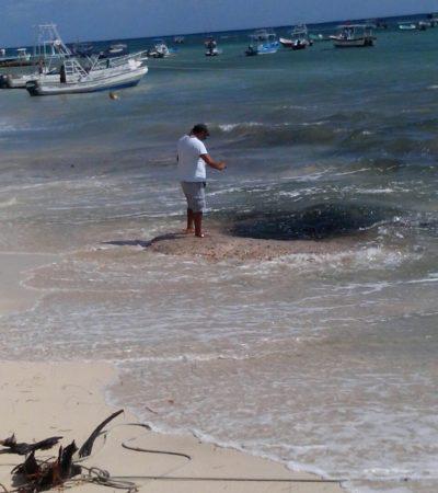 APARECE 'OJO DE AGUA' EN PLAYA: Desata conjeturas hoyo del cual brotan aguas fétidas de color negro a orillas del mar; Aguakán se deslinda