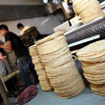 Confirman aumento en el precio de la masa y la tortilla; industriales se sienten engañados
