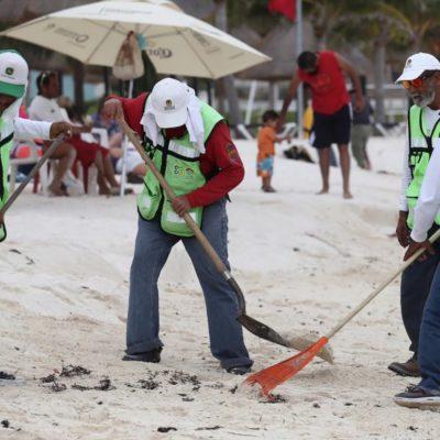 Dan mantenimiento a 22.9 millones de metros cuadrados de playas públicas de Cancún