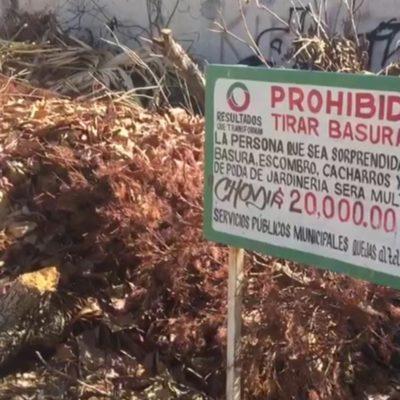 Basurero clandestino en pleno centro de Cancún, un verdadero problema de salud pública