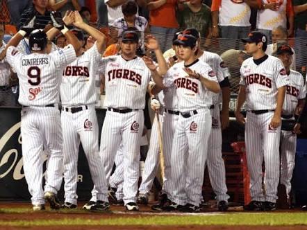 TIGRES TIRA LA TOALLA: Anuncia la histórica franquicia felina su separación de la Liga Mexicana de Beisbol
