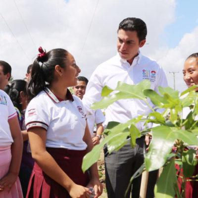 Inicia Alcalde programa de reforestación de la Avenida Cancún