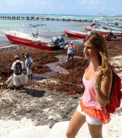 En vísperas de Semana Santa, problemas de sargazo en playas y basura en las calles empaña la imagen turística de Mahahual