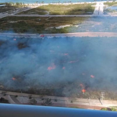 INCENDIO EN MALECÓN TAJAMAR: Gran movilización para sofocar siniestro en polígono de manglar en conflicto en Cancún