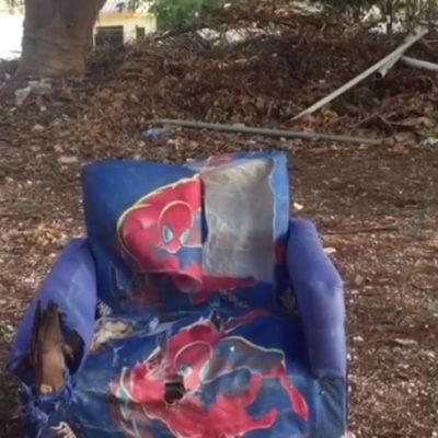 LA OTRA CARA DE CANCÚN: Lote de la SM 24 es utilizado como basurero clandestino (video)
