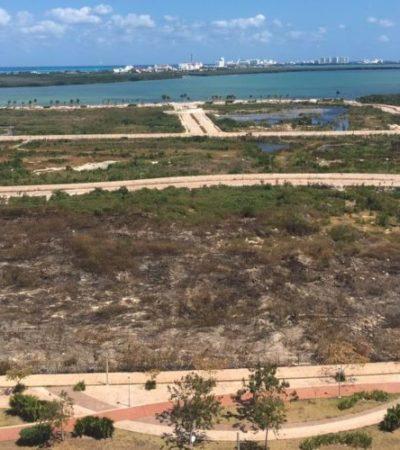 Acusan ambientalistas a Fonatur de causar el incendio en Malecón Tajamar; fue 'imprudencial', dice la Profepa