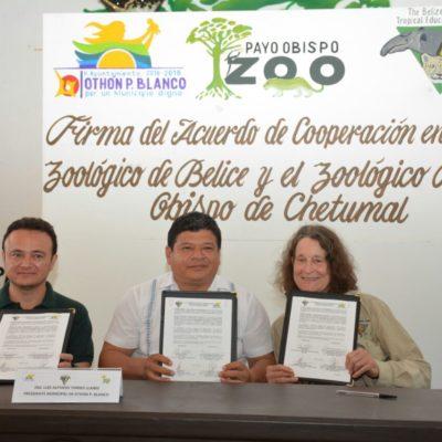 Firma Alcalde acuerdo de cooperación entre los zoológicos de Chetumal y Belice