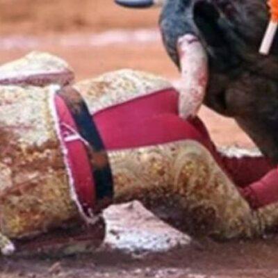 VIDEO | LO COGE EL TORO DE FEA FORMA: Reportan grave pero estable a torero tras sufrir severa cornada