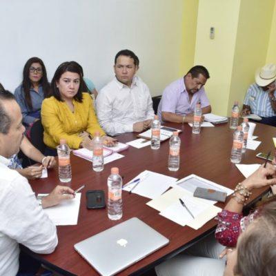 Anuncia Sedesi 'Caravanas de Desarrollo Social' por comunidades rurales, indígenas y urbanas de QR