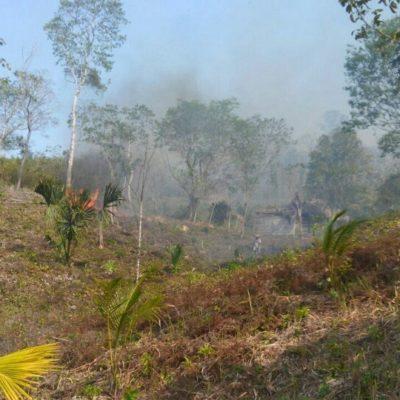 Amenaza incendio comunidad de González Ortega, a 40 kilómetros de Chetumal