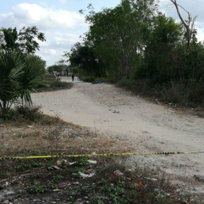 SUMAN 35 EJECUTADOS EN CANCÚN: Confirma Fiscalía que cadáver hallado ayer en la SM 515 recibió el tiro de gracia