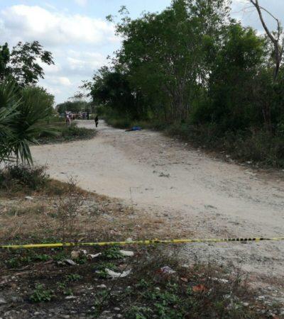 ASESINATO EN 'LA ANTORCHISTA' DE CANCÚN: Encuentran cuerpo de hombre apuñalado en colonia irregular