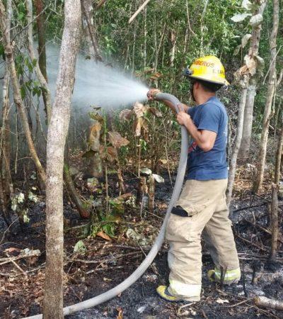 Llama Gobierno de Solidaridad a prevenir incendios forestales