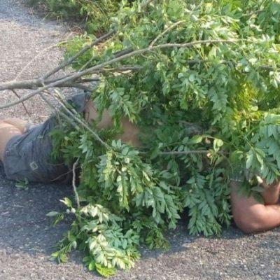 Matan a cuchilladas a un maestro del Tecnológico en Huimanguillo