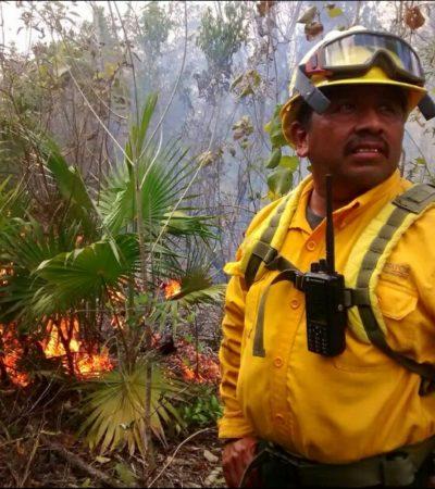 Atiende Conafor incendios forestales en Chacchoben y otros puntos del sur de QR