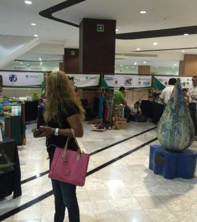 Convierten evento de sustentabilidad en carbono neutral