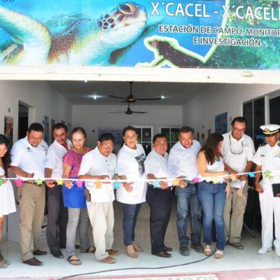Aperturan programa de protección a la tortuga marina en Xcacel-Xcacelito