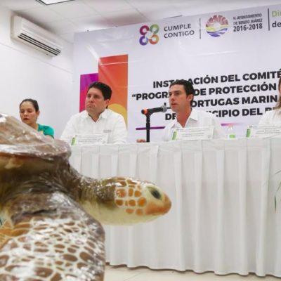 Instala Alcalde en Cancún Comité del Programa de Protección y Conservación de las Tortugas Marinas