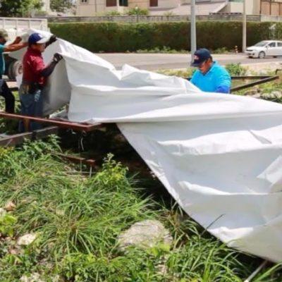 Remueven 90 espectaculares como parte de una campaña para evitar la contaminación visual en Cancún