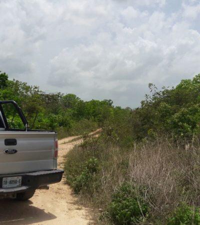 APARECE EJECUTADO EN LA REGIÓN 260: Dejan cuerpo en camino de difícil acceso a la altura de Prado Norte en Cancún
