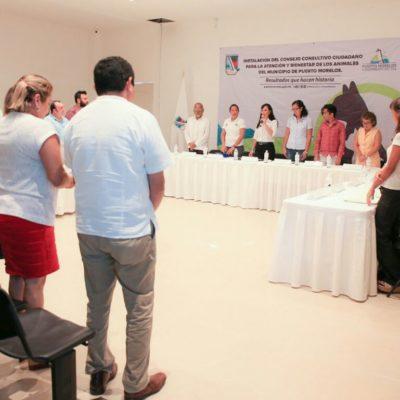 Instalan Consejo Consultivo Ciudadano para la atención y bienestar de los animales en Puerto Morelos