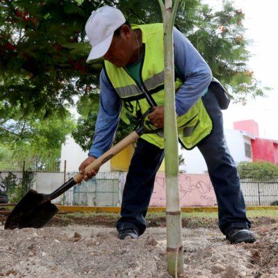 Seguirá la recuperación de camellones y espacios públicos de Cancún, advierte el Alcalde