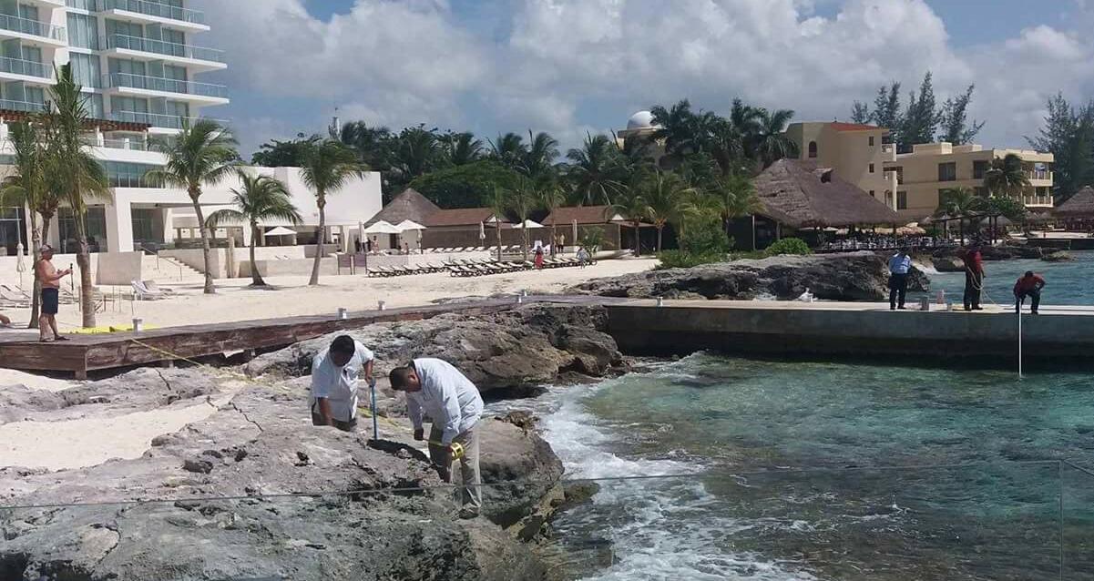 Cocodrilo espanta a turistas en Cozumel